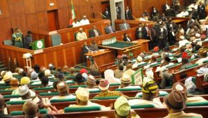 Nigerian representatives